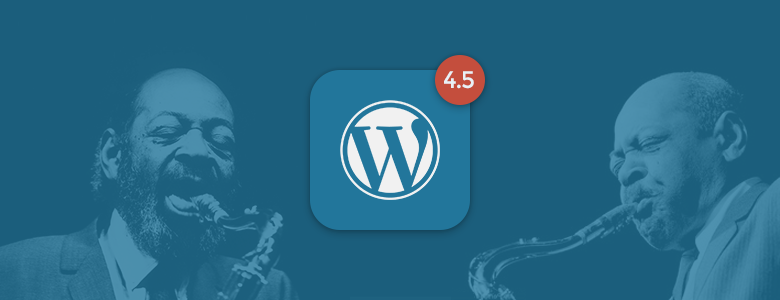 wordpress45